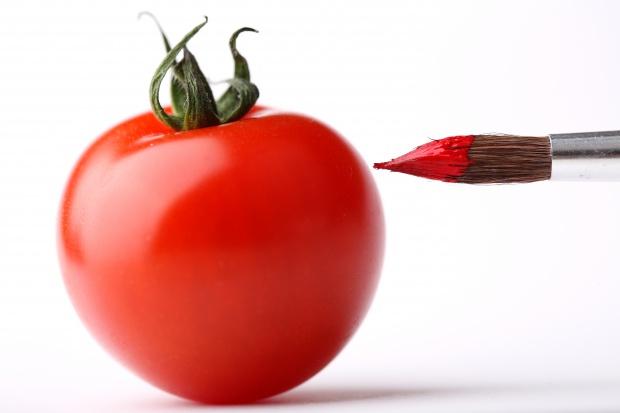 Fałszowanie Żywności